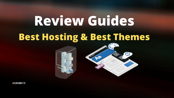 Beginner hosting and Theme Review